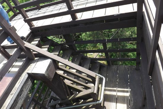Rib Mountain State Park: Steps to the deck