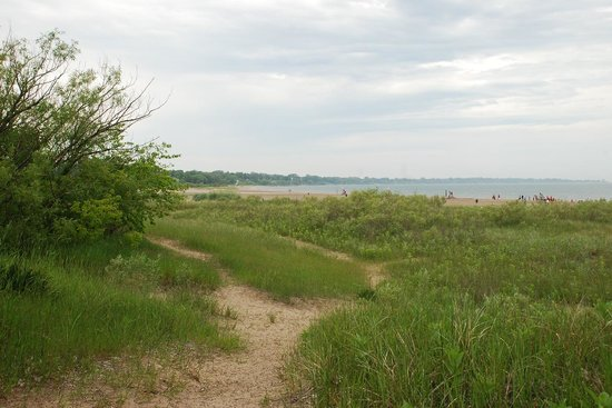 North Beach Park: Great views