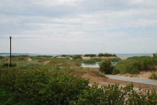 North Beach Park: boardwalk through dunes