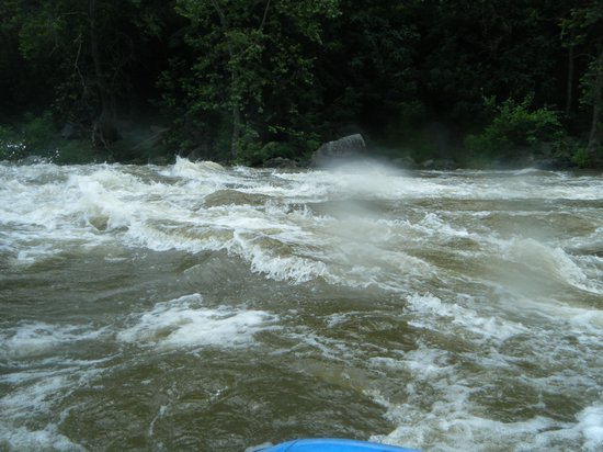 ACE Adventure Resort: Real whitewater at 10+ft above normal, best trip ever
