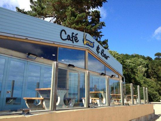 Venus Cafe: the café and bar