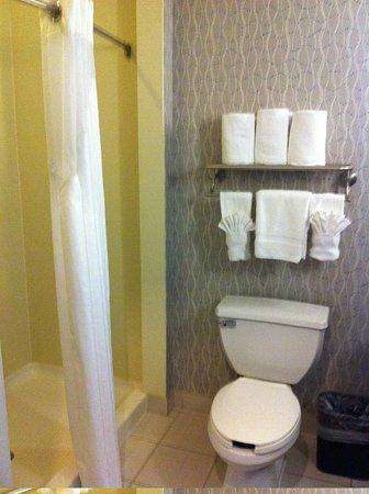 Holiday Inn Kemah (near boardwalk): Bathroom