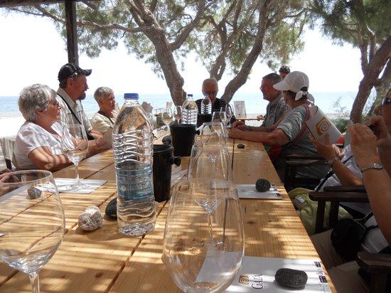 Gaia Winery : Wine tasting