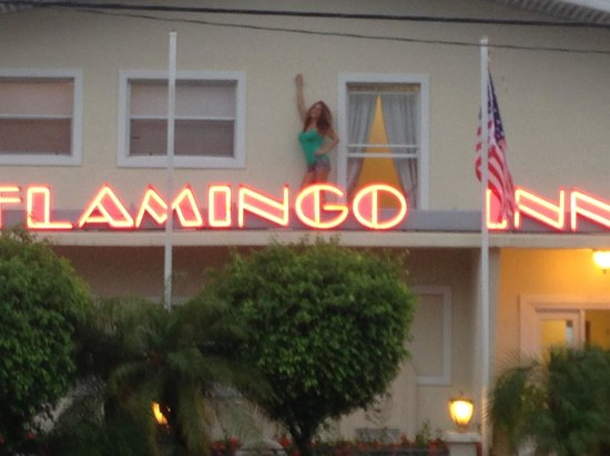 Flamingo Inn: This really happened