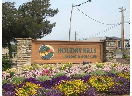 Silverleaf Holiday Hills Resort: Holiday Hills