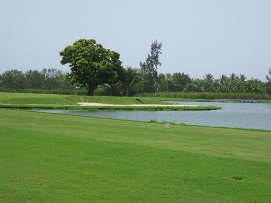 Barcelo Lakes Golf Course : golf