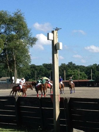Toughkenamon, PA: Brandywine Polo