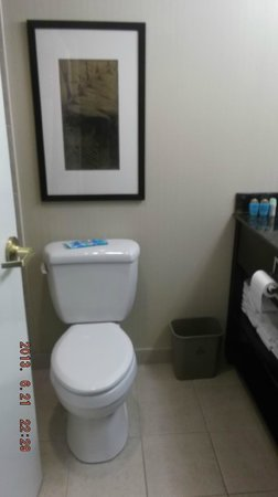 Hampton Inn & Suites by Hilton Calgary-Airport: bathroom
