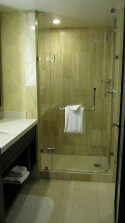 The L.A. Hotel Downtown: Very large shower / bathroom