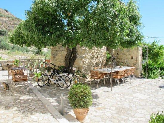 Villa Kerasia: A wonderful way to enjoy the day