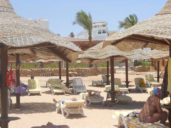 Coral Beach Rotana Resort Montazah Sharm El Sheikh Reviews