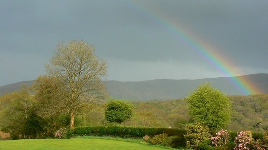 Birchwood: Garten mit Regenbogen