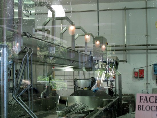 Looking in to the cheesemaking room - Face Rock Creamery