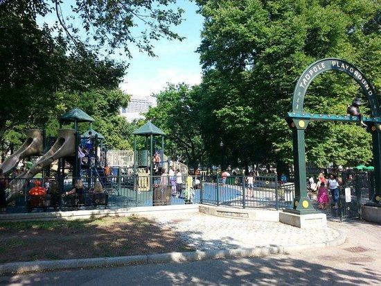Frog Pond : Tadpole playground