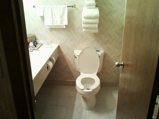 Baraga Lakeside Inn: Bathroom