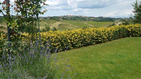 Aia Mattonata Relais: View to Siena