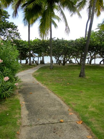 Rosewood Little Dix Bay: Path to beach from tree house cottage