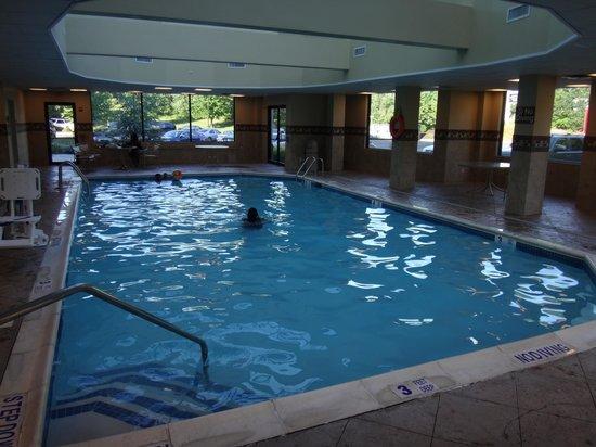 Hampton Inn Long Island - Brookhaven: Indoor pool
