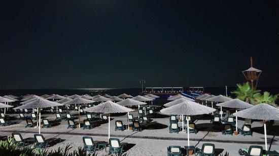 Gloria Verde Resort: Moonlit Beach