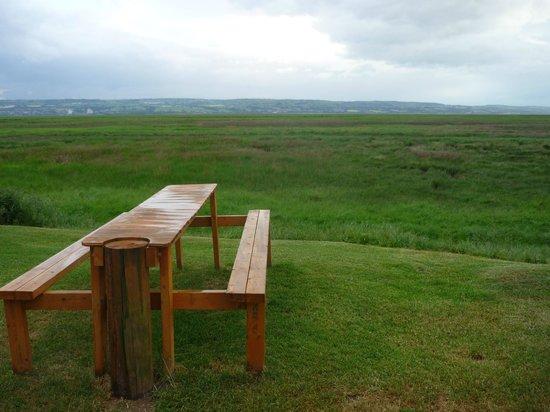 Harp Inn: Overlooking the marshes