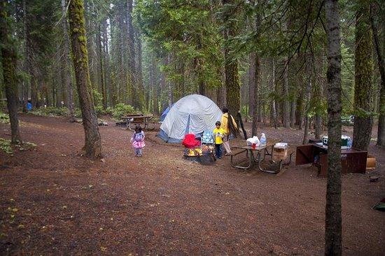 Crane Flat Campground: Campsite 525