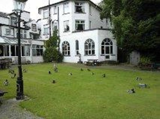 The Derwentwater Hotel: Ducks in the early morning