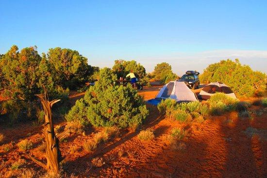 Horsethief Campground Reviews Moab Utah Tripadvisor