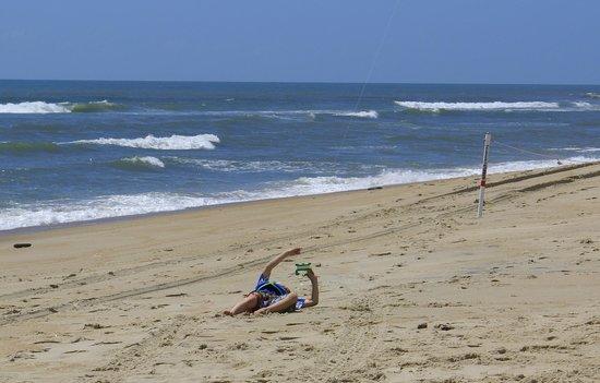Cape Hatteras National Seas Beach