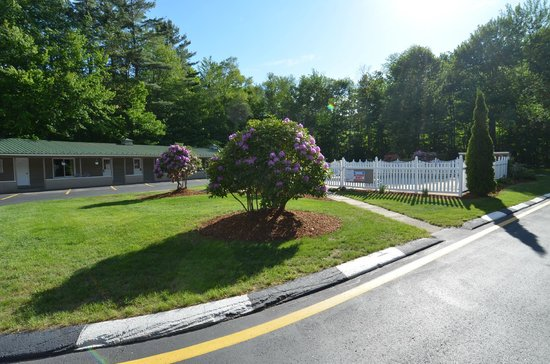 Econo Lodge Inn & Suites: Grounds