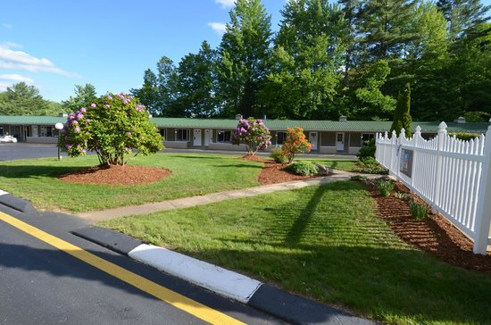 Econo Lodge Inn & Suites : Grounds