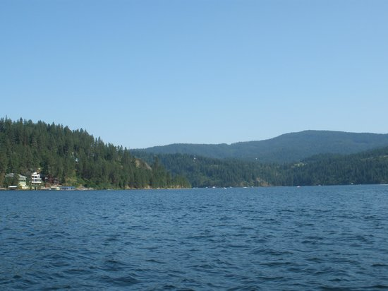 The Coeur d'Alene Resort: lake view