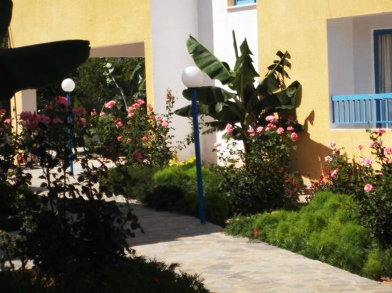 Kefalonitis Hotel Apts.: gardens