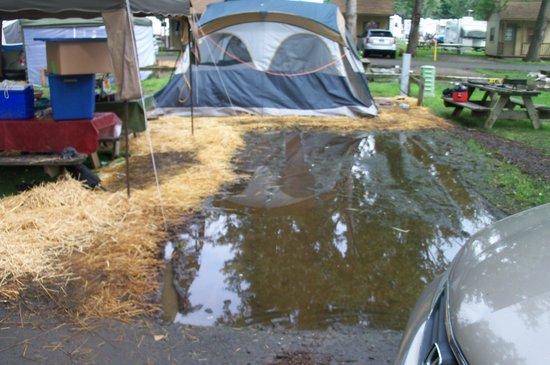 Sandusky KOA campground: campsite