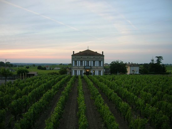 Le Pavillon Villemaurine, exterior from the vineyard