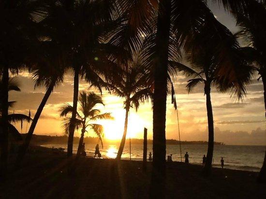 Lazy Dog Beach Bar and Grill Cabarete: sexy sunset jazz sundays
