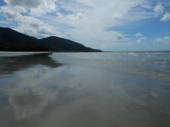 Cockatoo Hill Retreat: Cape Tribulation
