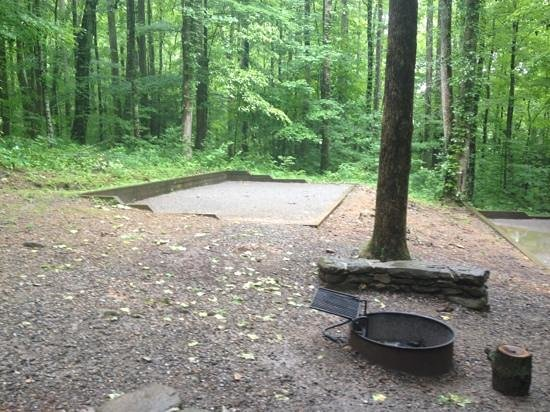 Cosby Campground: One of the group camping sites