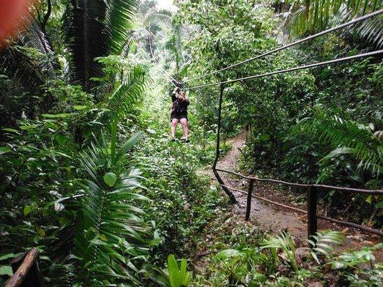t Belize Boutique Resort & Spa : ziplining
