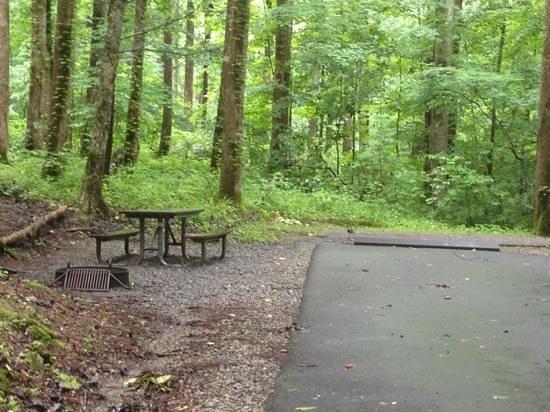 Cosby Campground: B93 RV campsite