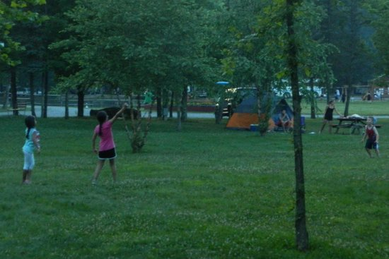 Lake Glory Campground: large sites to play in and around