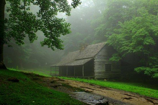 Roaring Fork: Ogle's cottage
