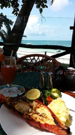 Lido Sea Food Grill: Lido Lobster (before)