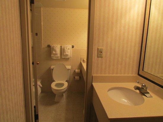 Park Inn by Radisson Williamsburg Historic: bathroom