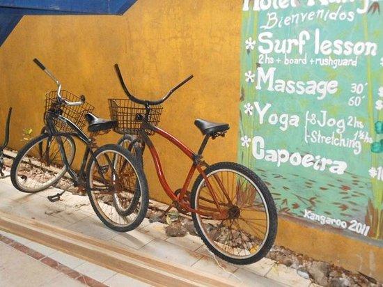 Hotel Kangaroo: Bicycles