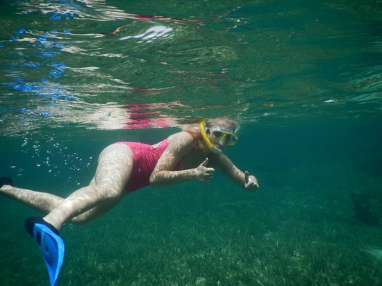 Steve's Paddle Shack: great snorkling