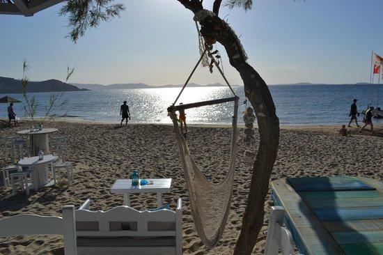 Villa Naxia Studios-Apartments: sunset at a beachside taverna just a short walk from Villa Naxia