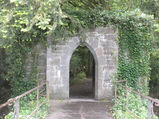 Royal Abbey of Cong: Bridge crossing the stream