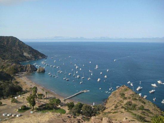 Catalina Coastal Tours & Fishing : View from J.C. Peak at White's Landing