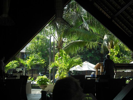 The Oasis Lagoon Sanur: View from restaurant