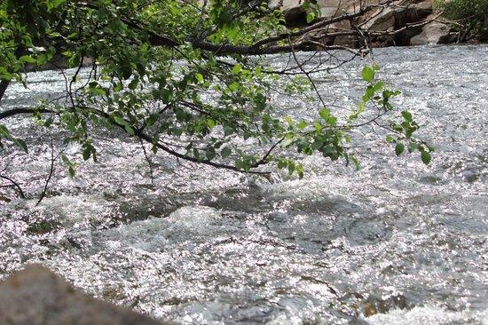 Glacier Lodge: Rambling river